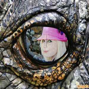 Montage photo œil de reptile